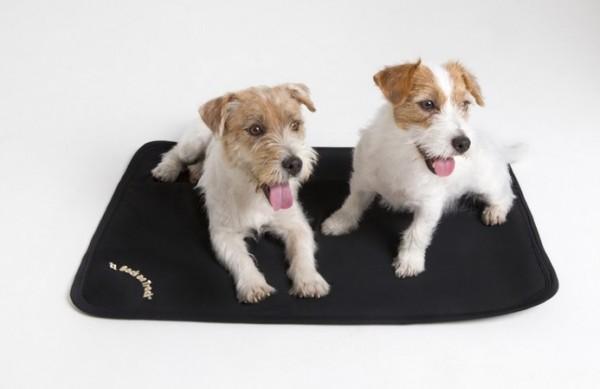 Hundematte - Back on Track - Liegematte / Liegeplatz für Hunde