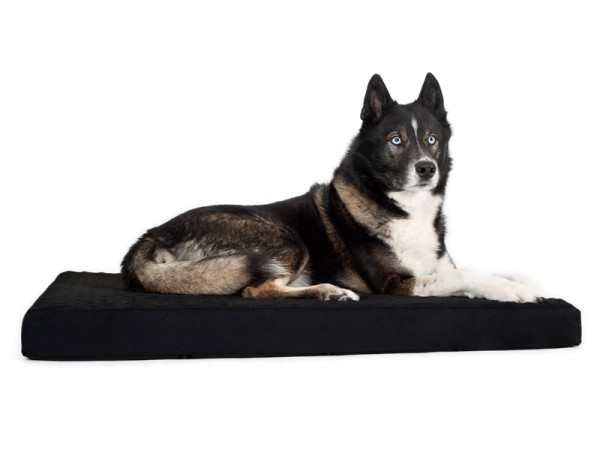 Back on Track Hundematratze aus Memory Foam / Hundebett