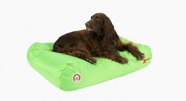 Doggy Bagg X-Treme - Hundebett - lemon green